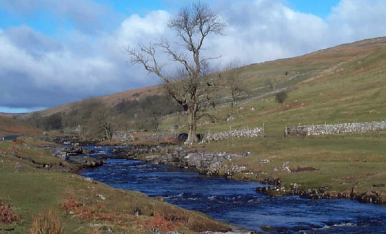Dales Rivers